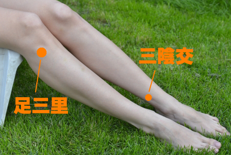 生理痛の辛い症状を緩和する:足のツボ【血海・足三里・三陰交】