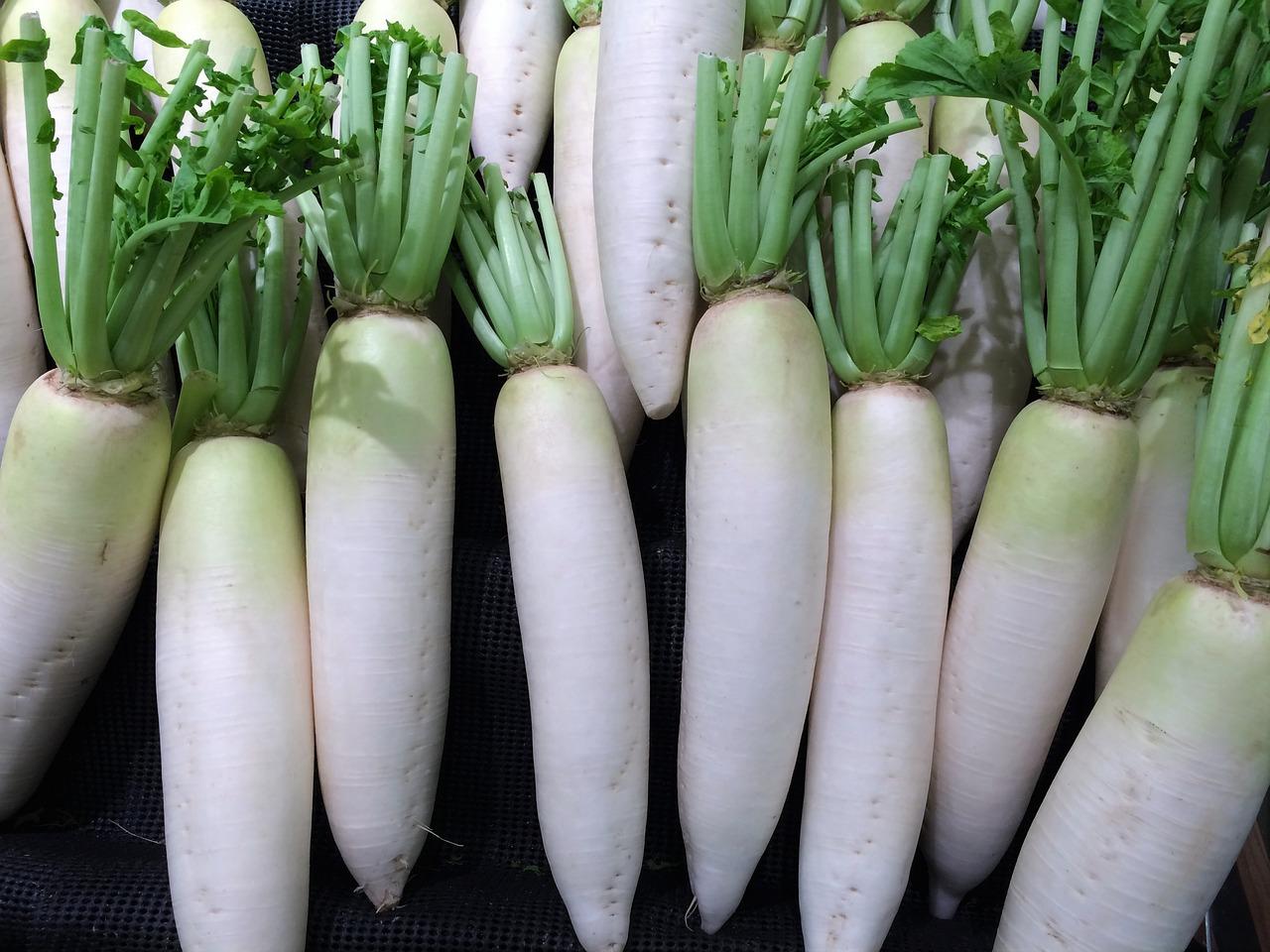 おすすめの痩せる食材:大根